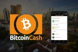 handla bitcoin cash i mobilen