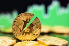 En halv Bitcoin