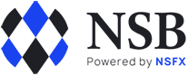 NS Broker logo