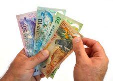 Olika sedlar av NZD