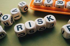 risk och möjligheter med råvaror